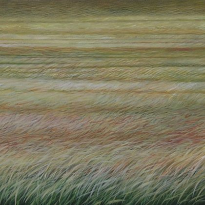 Fields of awareness 30x120cm