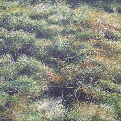 El Tigre (delta) acrilico stela 73x92cm